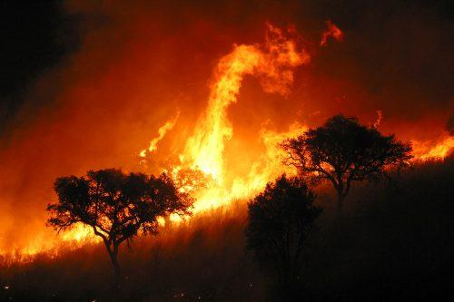 Incendio en la Sierra da Estrela, Portugal