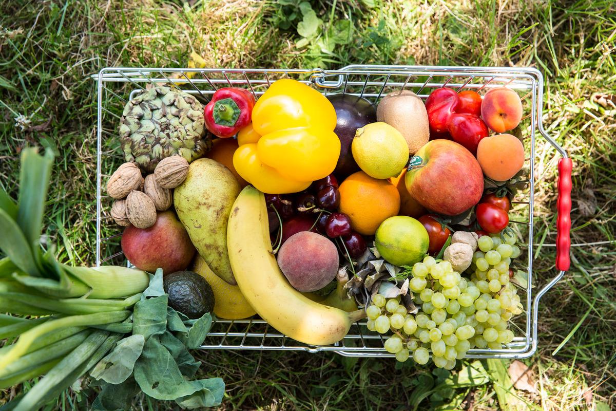 Cesta de la compra con frutas y verduras, la mayoría de ellas polinizadas por abejas.