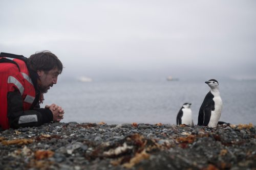 Javier Bardem en la Antártida