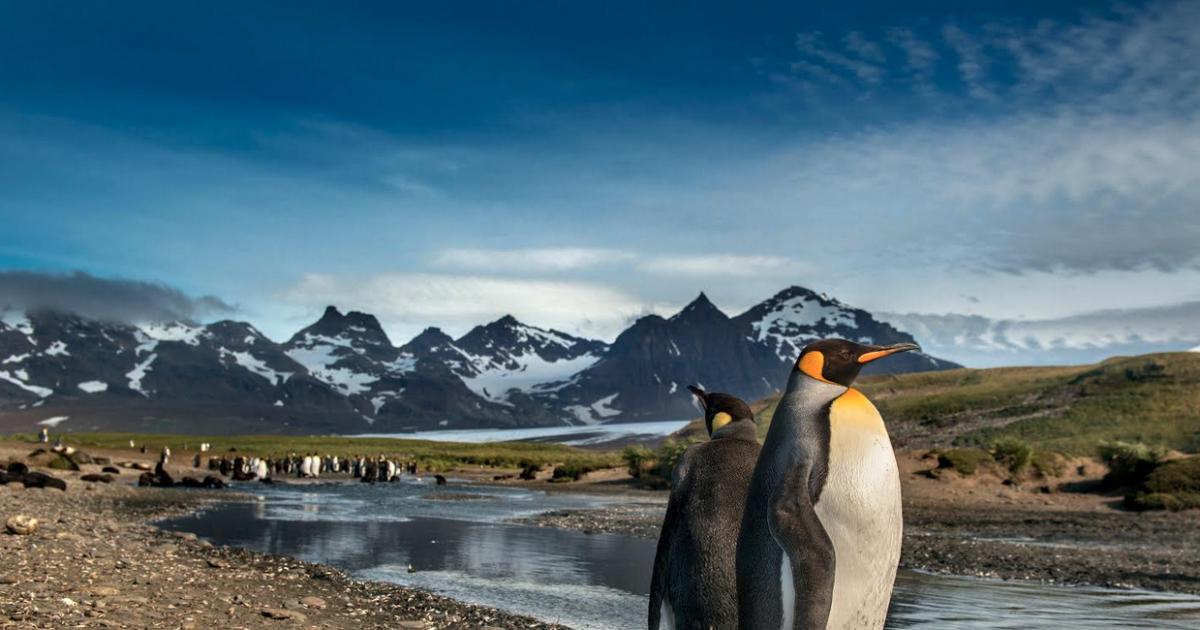 Antartida02-1200x630-c-default