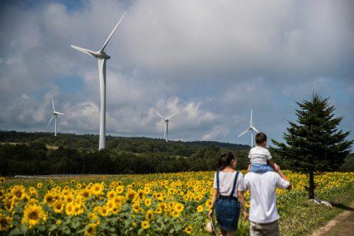 Una familia pasea delante de molinos de viento