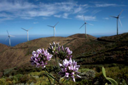 molinos de viento en la isla de El Hierro