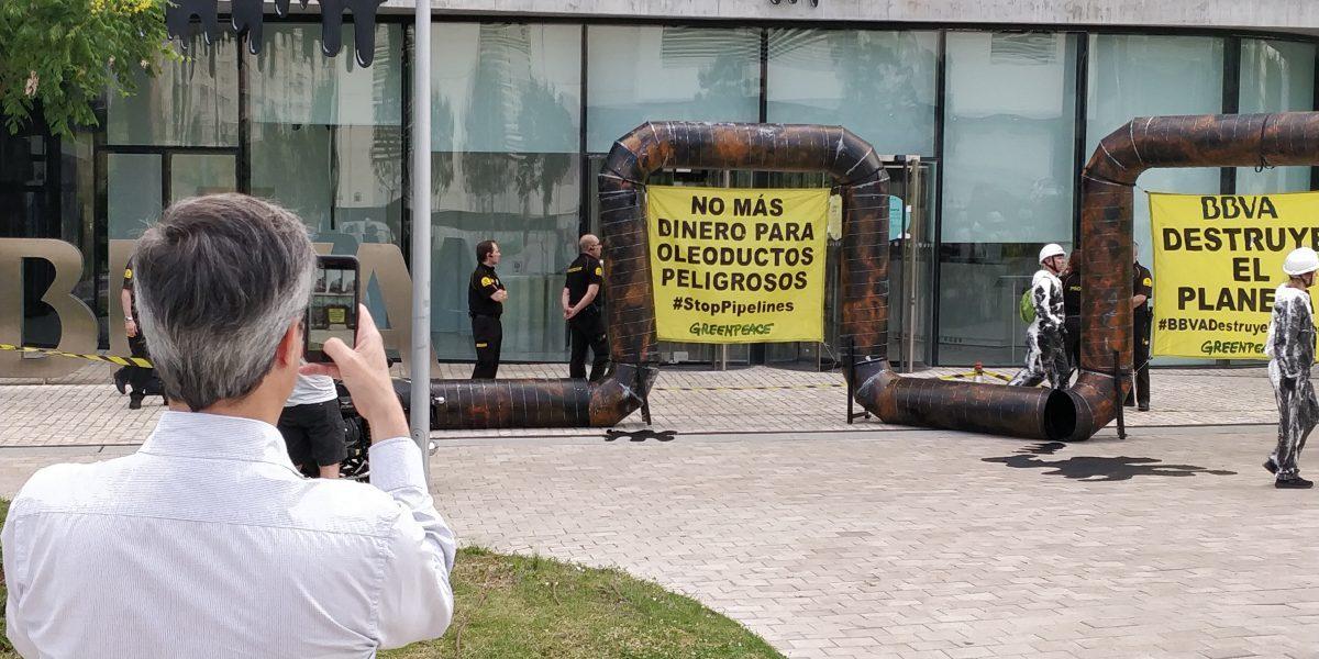 blog en vivo greenpeace