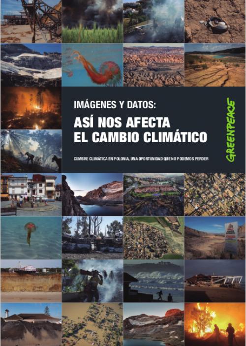 Así Nos Afecta El Cambio Climático Es Greenpeace España