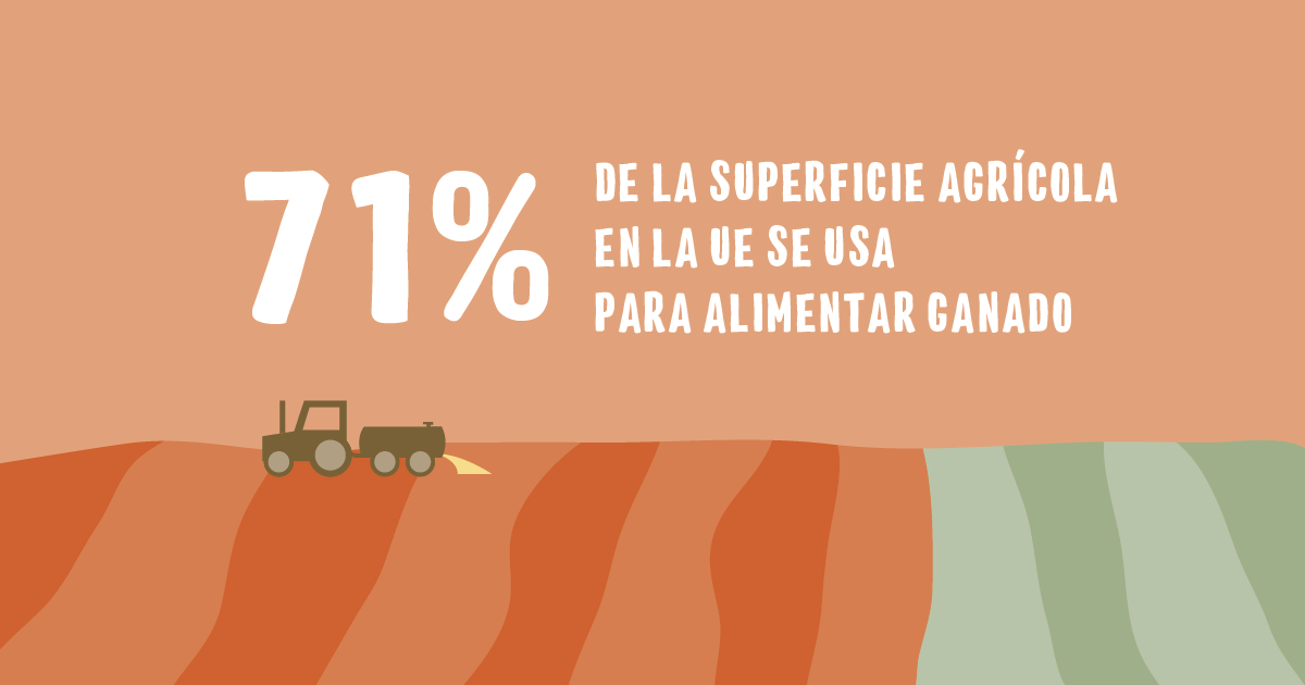 Superficie agrícola para ganado