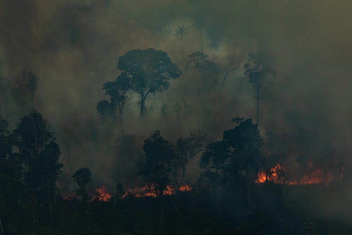 Incendios en Brasil