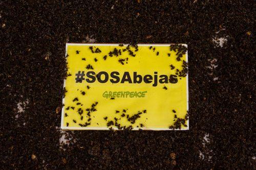 SOS Abejas