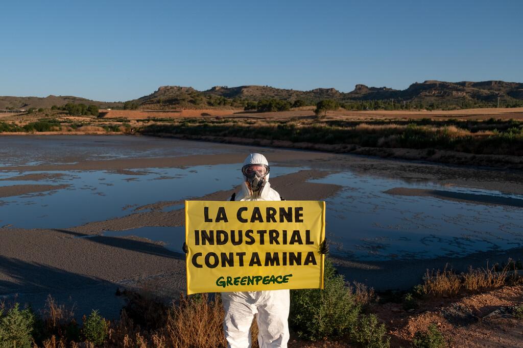 Acción de Greenpeace en la macrogranja industrial del Complejo Industrial de Cefusa, en Hellín, Albacete