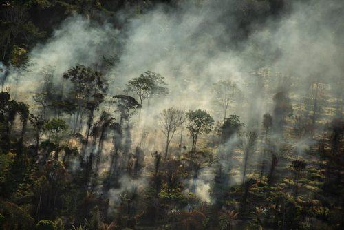Incendios Amazonía 2020