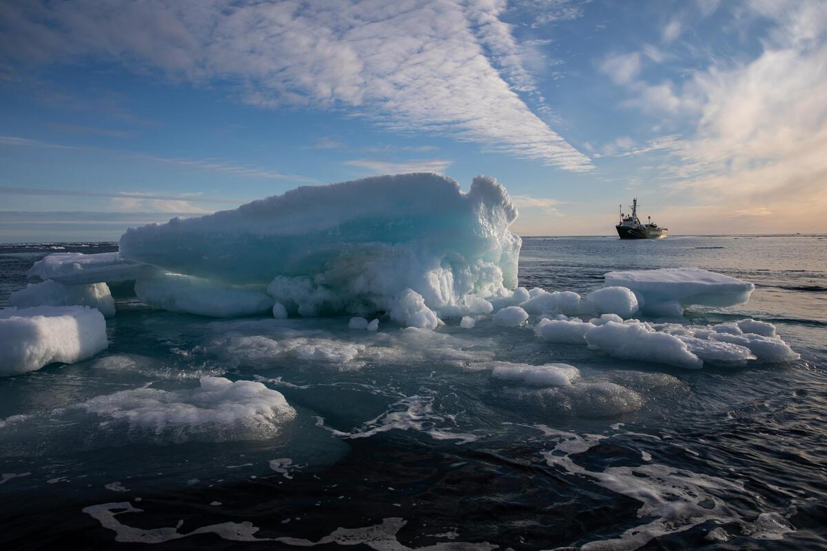 Mínimo de hielo Ártico 2020