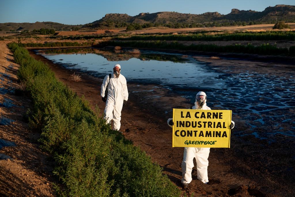 Acción de Greenpeace contra la ganadería industrial