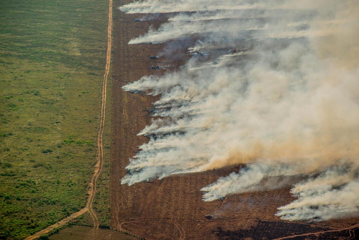 Deforestación Amazonia