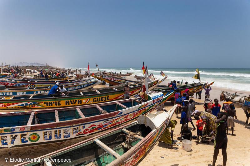 Vida cotidiana en Fass Boye, Senegal.