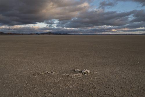 Sequía en la Laguna de Gallocanta