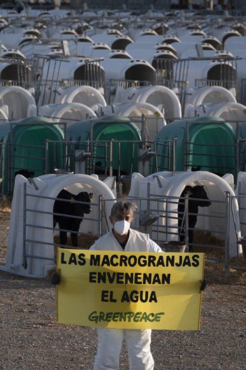 acción de Greenpeace en macrogranja industrial