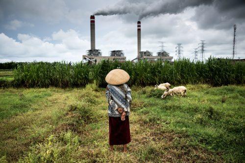 Una pastora cuida de su rebaño de ovejas que pastan cerca de una central de carbón en Jepara, Java Central.