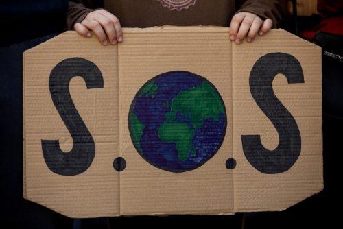 que puedes hacer tu Greenpeace